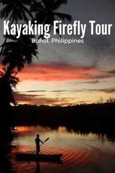 A Bohol kayaking firefly tour often features on people's Philippines bucket list. We join a firefly kayaking tour on the Abatan River with Kayakasia.