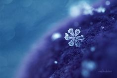 Snowflake by *andokadesbois on deviantART