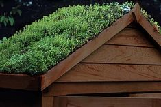 Best Grass Roof Shed Ideas Grass Roof Shed - This Best Grass Roof Shed Ideas images was upload on August, 9 2020 by Cleveland Koch. Here latest Grass Roof Shed images collection...