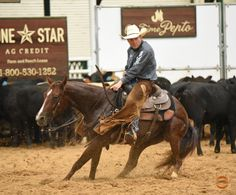 MADRE AMORE - $28,532 NCHA Earner 2012 Mare trained by Matt Budge      Sire:  High Brow CD   Dam:  SDP Tapt Dancing  NCHA $51,157 (by TR Dual Rey)    This mare is trained and shown by Matt Budge and was the 2015 Cotton Stakes Open Futurity Champion and also;  - Brazos Bash Open Futurity Finalist.   - Southern Futurity Open Finalist    Currently being shown in the four year old division and has $28,532 in NCHA Earnings.      For more info contact Matt Budge at PH: 281-795-7405 $75,000.00
