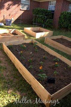 DIY Cedar Raised Garden Beds