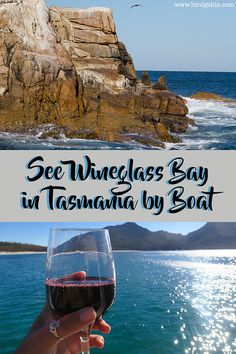 See an alternative view of one of Australia's best beaches with Wineglass Bay Cruises in Tasmania. Good food, lovely scenery and marine life abounds.