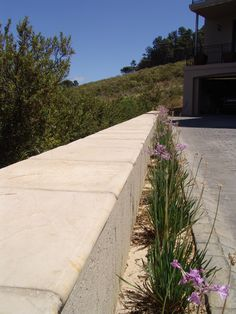 Driveway boundry wall capped with Double Round Edged Flagstone Pavers. Boundry Wall, Flagstone Pavers, Building Ideas, Sidewalk, Exterior, Projects, Design, Log Projects, Blue Prints