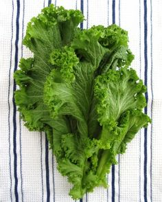 """See the """"Mustard Greens Basics"""" in our  gallery"""