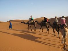 Camel trekking Morocco tours experience the calmness of the Sahara at the habitual pace of desert life and enjoy the warm kindness of the Berber people.