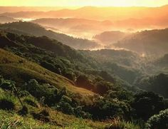 Morning view from the Yunque forest,  Puerto Rico
