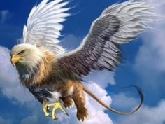 Griffin from Greek mythology. My fantasy novel Elf Lord is filled with such magical creatures. Fantasy World, Fantasy Art, Kopf Tattoo, Magical Creatures, Greek Mythical Creatures, Greek Mythological Creatures, Bald Eagle, Mythology, Animals
