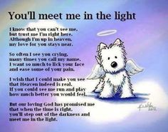 A nice note to send to someone who's dog has passed away.