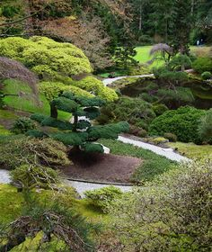 Japanese Garden at Bloedel Reserve. I'm lucky to live down the road!