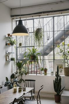 Beautiful home decoration with lots of plants! // home // interior // plants // green home Interior Exterior, Home Interior Design, Interior Decorating, Studio Decorating, Decorating Ideas, Decorating Websites, Interior Plants, Interior Doors, Industrial Interior Design