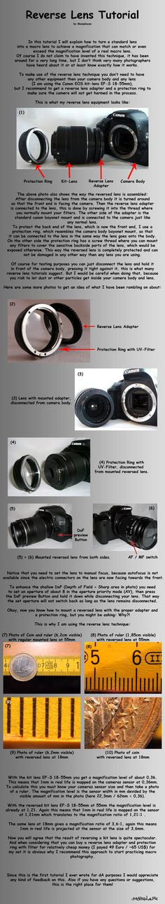 Reverse Lens Tutorial - how to turn a standard lens into a macro lens!