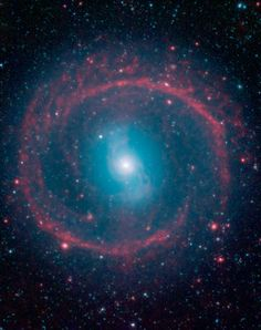 Ring of Stellar Fire | A new image from NASA's Spitzer Space Telescope, taken in infrared light, shows where the action is taking place in galaxy NGC 1291. The outer ring, colored red in this view, is filled with new stars that are igniting and heating up dust that glows with infrared light. The stars in the central area produce shorter-wavelength infrared light than that seen in the ring, and are colored blue. This central area is where older stars live, having long ago gobbled up....