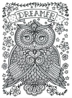 To print this free coloring page «coloriage-adulte-animaux-hibou», click on the printer icon at the right