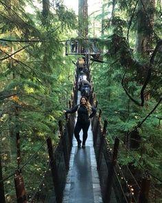 Capilano Suspension Bridge Park. Vancouver, Canada