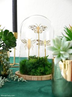 5 Diy Crafts, Diy Craft Projects, Straw Decorations, Decoration Table, Diy Cadeau, Do It Yourself Inspiration, Bird Party, Botanical Decor, Craft Party