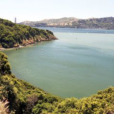 Smack in the middle of the San Francisco Bay, Angel Island is a car-less hiker's paradise, with knockout views of the city and the hills of Marin County. Once the last ferry leaves, the only people left are those who scored one of the island's 11 campsites.