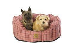 Tweed Oval Pet Bed for Humphrey