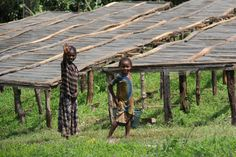 Girls near the coffee drying beds in Ethiopia