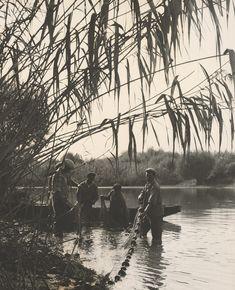 Ester Plicková - Krajina, ktorá odišla. Výlov rýb pri Palkovičove 1963 Female Photographers, Mountains, Nature, Photography, Travel, Women, Naturaleza, Photograph, Viajes