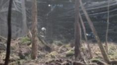 👽 - UFOs & Aliens - The United States Forest Service which operates over the 154 national forests in the United States and Puerto Rico has complied with a request under ...