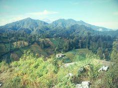 suasana di gunung semeru #eastjava #indonesia