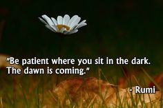 """Be patient where you sit in the dark. The dawn is coming."" - Rumi ( inspirational, motivational spirituality - spiritual sufi wisdom and poetry) Rumi Poem, Rumi Quotes, Spiritual Quotes, Positive Quotes, Life Quotes, Quotes To Live By, Inspirational Quotes, Daily Quotes, Lord"