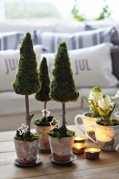 Mini Christmas trees full of joy and happiness # christmas tree Informations About Mini-Weihnachtsbäume voller Freude und Fröhlichkeit - Dekoration Ideen Pin You can easily use Christmas Tree Topiary, Decorations Christmas, Mini Christmas Tree, Green Christmas, Christmas Mantels, Christmas Time, Christmas Crafts, Holiday Decor, Xmas Tree