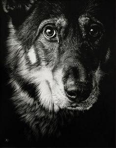 Hudozhnitsa-Cristina-Penescu.-Gratografiya-Wolf-Dog.-11x14-dyuymov