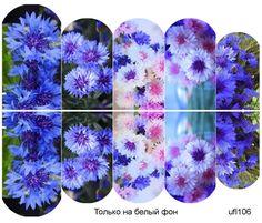 Слайдер-дизайн премиум, Цветы ufl106 - 1
