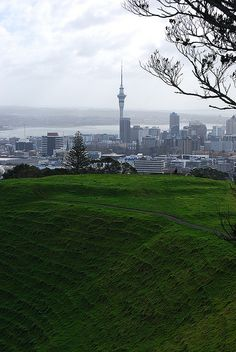 Sky Tower From Mt Eden, Auckland, New Zealand New Zealand Houses, Auckland New Zealand, Vacation Spots, Amazing Places, Places Ive Been, Exploring, The Good Place, Tower, Around The Worlds