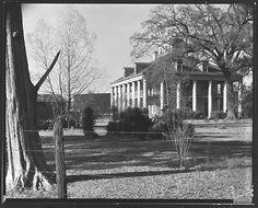 [Sevenoaks Plantation House, Jefferson Parish, Louisiana]
