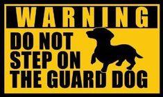 Amazon.com: DACHSHUND Do Not Step on the Guard Dog Sticker (warning dach funny): Automotive