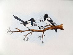 Original Drawing Magpie Tea by BarefootSeeker on Etsy, $60.00