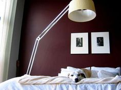 1000 images about bedroom accent wall on pinterest bedroom accent