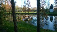 Poděbrady rybníček u Havířského kostelíčka Trunks, Plants, Drift Wood, Tree Trunks, Plant, Planets