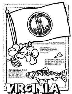 330 best state quarters flags images 50 states united states flags West Virginia State Fish crayola state coloring pages virginia coloring page