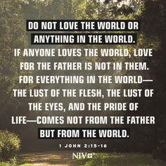 NIV Verse of the Day: 1 John 2:15-16