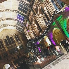 Yesterday #london said #goodbyedippy @natural_history_museum he's been #welcoming #oldandnewfriends at the #musuem for many years and he's also the place where I met my #husband for our #firstdate #wewillmissyoudippy #farewell