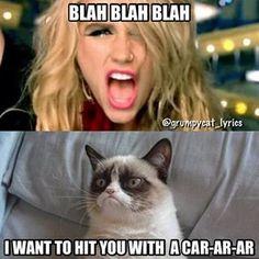 :D Grumpy Cat!