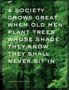 """ A society grows great when old men plant trees whose shade they know they shall never sit in."" Greek proverb"