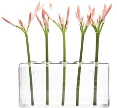 Hudson and Vine - Five Hole Wall Vase, $24.00 (https://hudsonandvine.com/five-hole-wall-vase/)