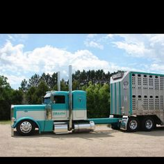 now this is a bull hauler