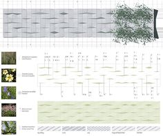 1000 images about decomposition on pinterest landscape