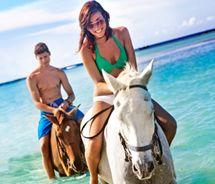 A grande atividade tempo de praia ! Barbados, aqui vamos nós ... a cavalo ! :)