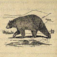 Digital Printable Black Bear Download by VintageRetroAntique