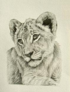 """Lion cub 12x9"""""""