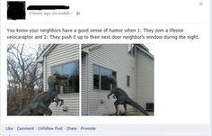 Oh my gosh... This neighbour is amazing
