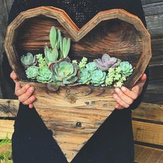 "9,215 Likes, 124 Comments - Hippie Vibes ☯️✨ (@goodjujutribe) on Instagram: ""♡ Succulent love  via @samanthastremmel ✨"""