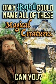 Are you smarter than Hagrid? Take this quiz to test your knowledge of the magical creatures in the Harry Potter series. Harry Potter Texts, Harry Potter Quiz, Harry Potter Theme, Harry Potter Birthday, Harry Potter Characters, Harry Potter Hogwarts, Personality Quizzes For Kids, Magical Creatures Harry Potter, Harry Potter Dragon