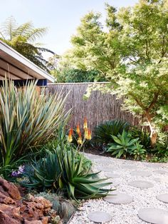 Tropical garden in Melbourne, Australia that incorporates aloes, agaves, volcani… - Tropischer Garten Landscaping Around Trees, Landscaping With Rocks, Modern Landscaping, Front Yard Landscaping, Landscaping Ideas, Landscaping Edging, Farmhouse Landscaping, Lawn Edging, Landscaping Plants